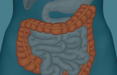 especialidades_cirugia-aparelho-digestivo_diverticulite-aguda-thumb